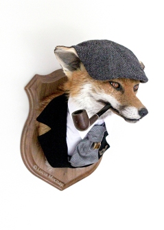 Anthropomorphic Taxidermy chap Fox by Lucia Mocnay