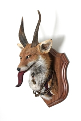 Anthropomorphic Taxidermy Art Fox Krampus by Lucia Mocnay
