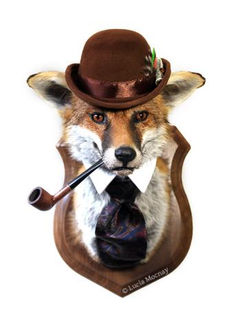 Anthropomorphic Taxidermy Art Fox Gentleman by Lucia Mocnay