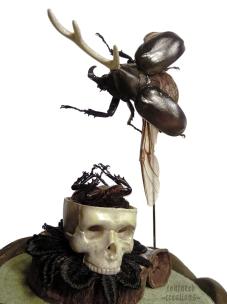 (detail) Rhino Beetles, metal horn, faux skull, wood, textile, gumnut
