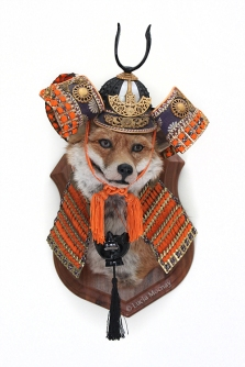 Anthropomorphic Taxidermy Samurai Fox by Lucia Mocnay