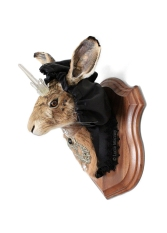 Anthropomorphic Taxidermy Art Hare by Lucia Mocnay
