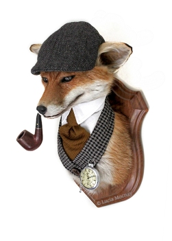 Anthropomorphic Taxidermy Art Gentleman Fox by Lucia Mocnay