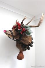 Rudolph the Red Nose Reindeer anthropomorphic taxidermy art by Lucia Mocnay