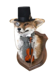 Anthropomorphic Taxidermy Art Gentleman by Lucia Mocnay